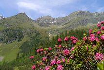 Escursioni in alta montagna