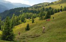 Settimane estive a Obertilliach