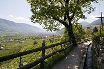 Escursioni & MTB a Merano e dintorni