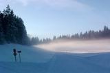 Kalter nebel in der Leutasch