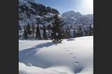 Kaunertaler Winter