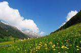 Südtiroler Schlinigtal