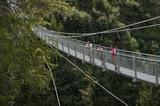 Wanderer auf der Hängebrücke