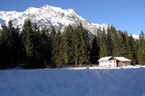 Winterstimmung mit Eiskristallen im Vordergrund